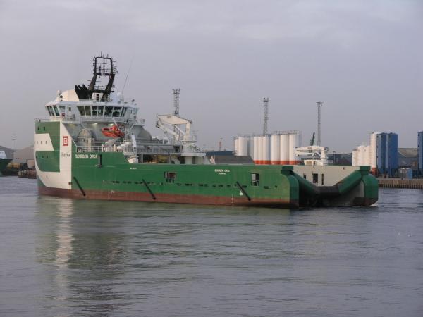 Bourbon orca 061013 22